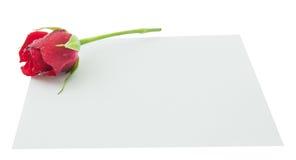 Mellanrum hälsningkort, tomt vitt kort, valentin liten röd ro arkivfoto