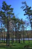 Mellanstatligt vila område Arkivbild