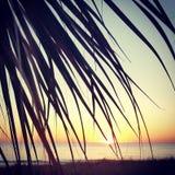 Mellersta stranduppsättning fotografering för bildbyråer