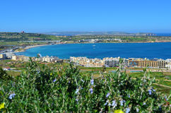 Mellieha Bay - Malta. The beautiful bay of Mellieha or Ghadira in Malta Royalty Free Stock Photography