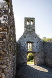 Mellifont修道院,德罗赫达,劳斯郡, Irland 图库摄影