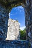 Mellifont abbotskloster, Drogheda, ståndsmässiga Louth, Irland Royaltyfri Foto