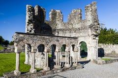 Mellifont abbotskloster, Drogheda, ståndsmässiga Louth, Irland Arkivbilder