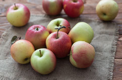 The mellow apples Stock Image