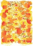 Mellow autumn. Autumn, harvesting time.  vector illustration Royalty Free Stock Photo