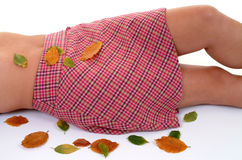 Mellow Autumn Royalty Free Stock Image
