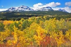 Mellow autumn. The trees with yellow  foliage. Mellow autumn. Picturesque autumn trees with yellow and orange foliage Royalty Free Stock Image