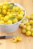 Mellow mirabelles, Stock Images