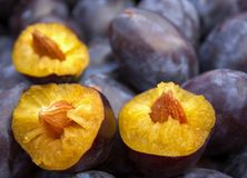 Mellow plums Royalty Free Stock Photos