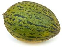 Melón verde Imagen de archivo libre de regalías