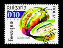 Melo огурца дыни, serie Cucurbits, около 2002 Стоковые Фотографии RF
