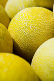 Melo de Cucumis, melon Photo stock