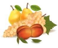 Melocotones, peras y uvas. Imágenes de archivo libres de regalías