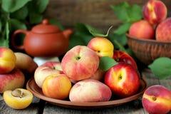 Melocotones y albaricoques de la fruta fresca con las hojas Imágenes de archivo libres de regalías