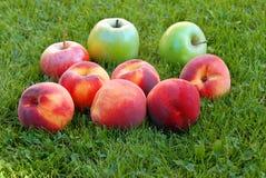 Melocotones y manzanas Imagen de archivo libre de regalías