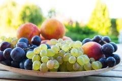 Melocotones y uvas en una placa en la tabla Fotografía de archivo libre de regalías