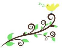Melodía de la primavera Fotografía de archivo