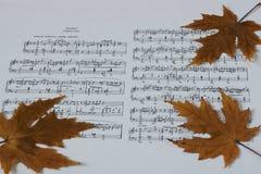 Melodía del otoño Imagen de archivo