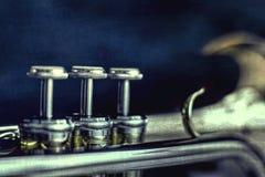 melodic Lizenzfreies Stockfoto