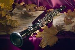 Melodie van de mellow herfst royalty-vrije stock afbeeldingen