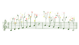 Melody with flowers - gamma illustration Royalty Free Stock Photography