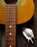 Guitar. Melody of an old vintage guitar Royalty Free Stock Image