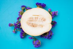 Meloen met lavendel Stock Foto's