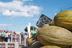 Meloen op de markt Stock Foto