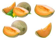 Meloen op wit wordt geïsoleerd dat stock afbeeldingen