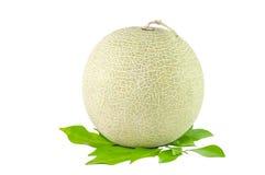 Meloen op witte achtergrond Stock Foto's