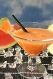 Meloen smoothie Royalty-vrije Stock Afbeeldingen