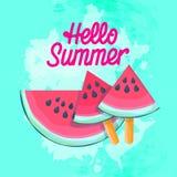 Meloen van het het Roomijs de Sappige Water van de watermeloenplak Royalty-vrije Stock Fotografie
