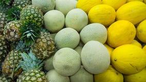 meloenen stock foto