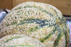 meloenen Stock Afbeeldingen