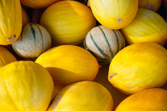 meloenen Stock Foto's