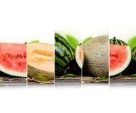 Meloenfruit stock afbeelding