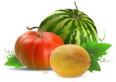 Meloenwatermeloen en pompoen Royalty-vrije Stock Afbeelding