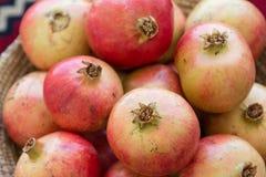 Melograni organici di recente selezionati Nizwa, Oman Fotografia Stock Libera da Diritti