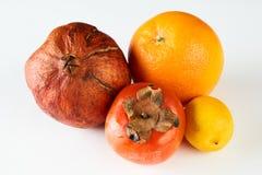 Melograno arancio del cachi del limone maturo di frutti Fotografie Stock Libere da Diritti