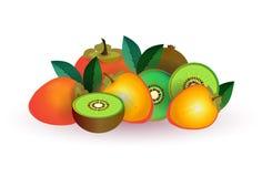 Melonäpplefrukt på vit bakgrund, sund livsstil eller bantar begreppet, logoen för nya frukter vektor illustrationer