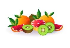 Melonäpplefrukt på vit bakgrund, sund livsstil eller bantar begreppet, logoen för nya frukter royaltyfri illustrationer