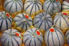 melon Obraz Royalty Free