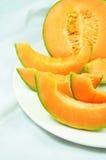 melon Arkivbild