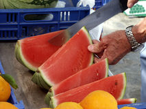 Melon. Fruit Market royalty free stock images