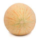 Melon-2. Ripe melon on white. Isolation Stock Photos
