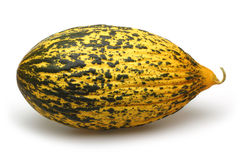 Melon. Yellow Melon on the white background stock photography
