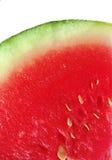 Melon royaltyfri bild