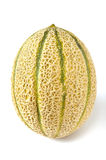 Melon Royaltyfria Bilder