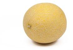 Melon  Royaltyfri Fotografi