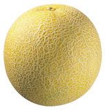 Melon. Yellow melon Royalty Free Stock Photo